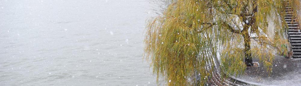 CENTURY 21 Lake Area Realty